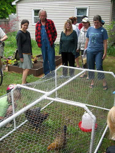 Discussing my chicken tractor with Kate and some other guests.