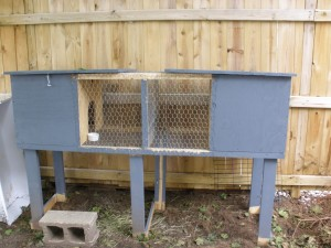 housing for two rabbits